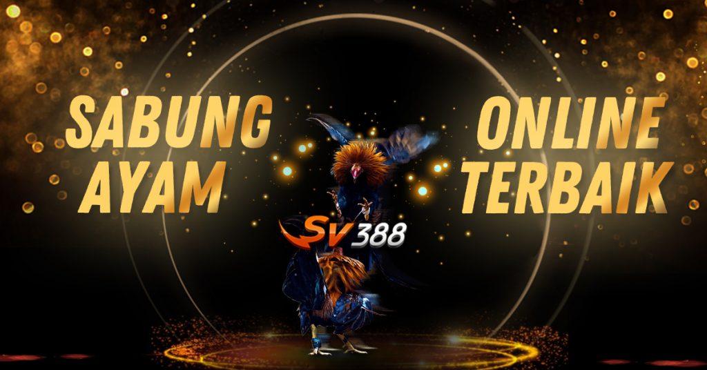 SV388 Sabung Ayam Online